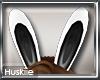 [HK]Bunny Ears