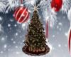 !T! Xmas | Tree