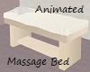 Animated Massage Bed