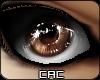 [CAC] Chiuaua Eyes M/F