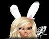 *P* Bunny Ears #2 [ANI]
