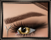 Brown Eyebrows 04