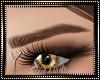 Brown Eyebrows 04