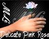 (MLe)Delicate Pink Rose