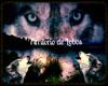 IvI Territorio de Lobos