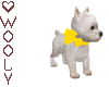 Westie puppy w bow yello