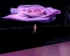 Pink Rose Club