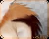 💎 Abby | Shoulder Fur