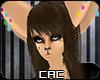[CAC] Serach Fur
