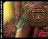 African Warrior 🦁