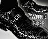 Cat~ Mr White Rose Shoes