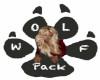 VIOLA WOLFPACK PAW