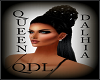 QDL QUEENDALHIA BLACK