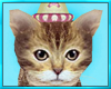 Party Play Kitten
