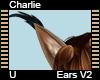 Charlie Ears V2