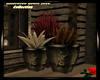 Halloween Planter/Plants