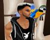 s~n~d trig parrot 2