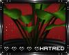 !H Jades Plant | V1