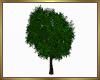 Nice Full Tree Mesh