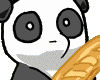 panda holding
