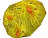 #38 Coral Reef flower