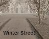 Winter Street Holidays