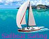 Sailboat Sailing RUS