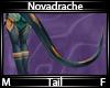 Novadrache Tail