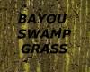 [LD] BAYOU SWAMP GRASS