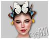 Butterfly $$