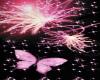 Butterfly Dance Bubble