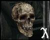 ~Scared Sh*tless Skull~