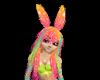 Jelly Rainbow Anim. Ears