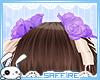 Hair Roses Ribbons Purp