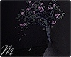 ☾ Dark hours plant