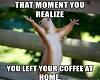 {DD}Squirell Coffee