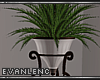 !E! NEVERTIDE PLANT