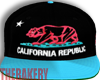 California Republic Snap