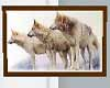 3 wolves Picture