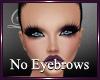 *Lb* No Eyebrows
