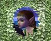 Leafy Visitor Frame