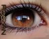 *R* Ambar Eyes M