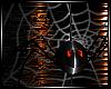 :ANIMATED SPIDER/WEB