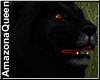Black Lion King
