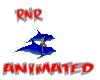 ~RnR~DOLPHIN RIDE PAIR