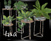{Ina}-VH Plant-set