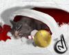 CM| Cat / Hat / Xmas