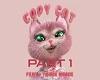 Copy Cat Part 1