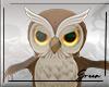 Owl Pet FV