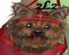 2L2 Yorkie Totebag-red